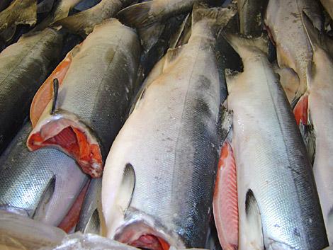 Цены на рыбу в Приморье признали завышенными
